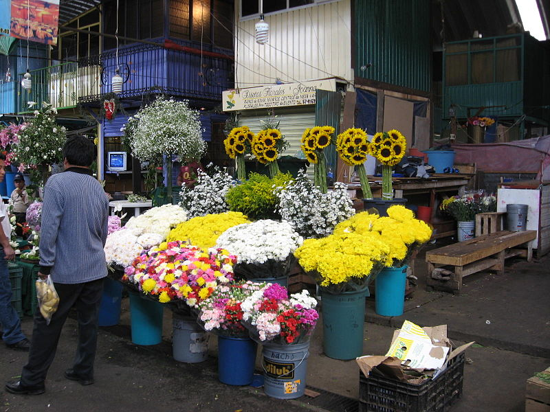 How to Find Love at Mexico City's Markets