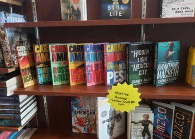 Books by Carmen Amato